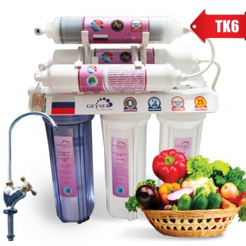 Geyser TK6