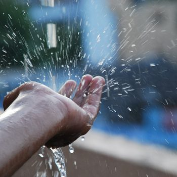 trong nước mưa có chất gì