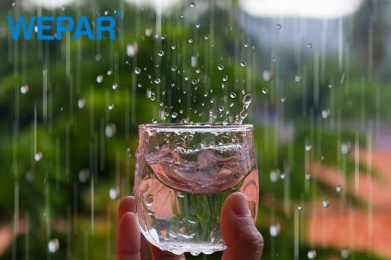cách xây dựng bể chứa nước mưa và lọc nước mưa